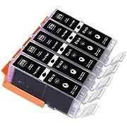 ESMOnline komp. XL Druckerpatronen für Canon Pixma TS 5050 5051 5053 5055 6050 6051 6052 8050 8051 8052 8053 9050 9055 als Ersatz zu PGI-570 (5er Set - schwarz)