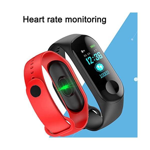 TaiRi Pulsera Inteligente Pantalla en Color HD IP68 Impermeable M3 Rastreador de Actividad Pulsera con presión Arterial… 2