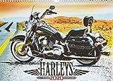 Harleys 2020 - Fred McMann