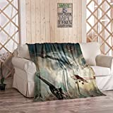 Tcoapy Vintage Throw Blanket Military Retro Plane Vintage Aircraft Airplane Aviation Aviation Sherpa Fleece Bedding Bedspread Flannel Warm Microfiber Sofa Blanket Couch Bed 40' x 50'