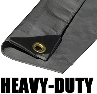 10'X50' EXTRA Heavy Duty 12 mil Silver Tarp 3 Ply Coated Reinforced Canopy 6 oz 3 Layer (Includes Tarps Tools and Toys Maintenance Manual)