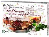 Feelino Teeblumen Geschenk-Kollektion, Adventskalender, Kalender mit 24 verschiedenen Teerosen,...