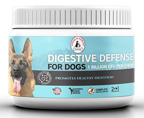 Digestive Defense 3-in-1 Chewable Probiotics for Dogs with Prebiotic and...