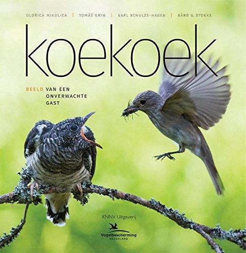 Koekoek: Beeld van een onverwachte gast