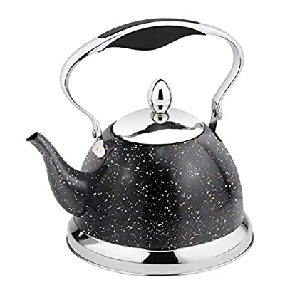 HausRoland Tea Kettle Mini Stainless Steel 1.1-Quart Stove Top Induction Modern Kettle Teapot (GS-04537A-1L, Black)