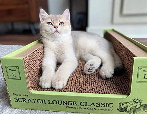 Scratch Lounge Cardboard Cat Scratcher - New Size - Lasts 10 Times Longer Than Other Conventional Scratchers - Large and Durable with Reversible Floor