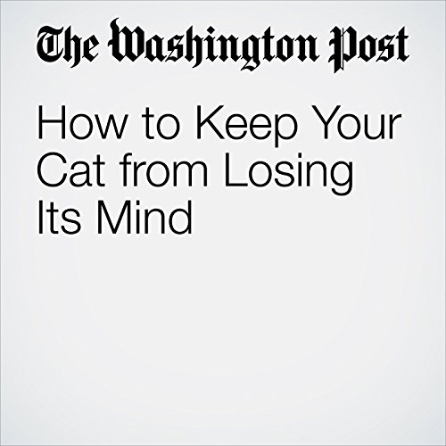 How to Keep Your Cat from Losing Its Mind audiobook cover art