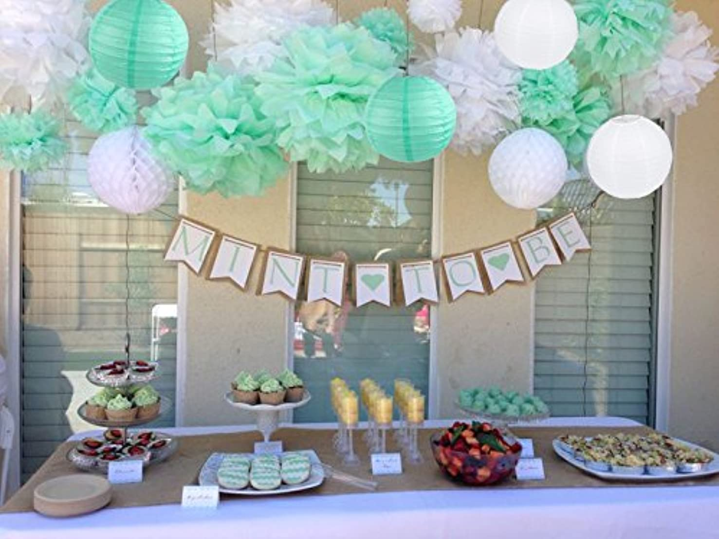 Sogorge 19 Pcs Party Decoration Kit White Mint Green Tissue Paper Pom Poms Flowers Papers Lanterns Birthday Wedding Christening Frozen Theme Party Decorations for Adults Boys Girls