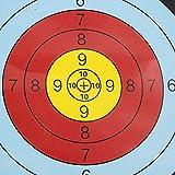 U/N Diana para tiro con el arco, papel diana de anillo entero, 20 unidades, mapa diana para impresión a color, 40 x 40 cm, papel diana de anillo completo