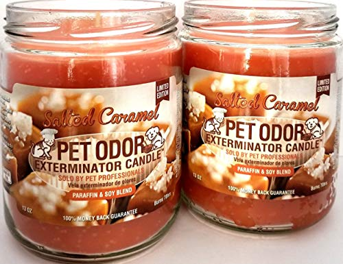 SPECIALTY PET PRODUCTS Duftkerze im Glas für Haustiergerüche Salted Caramel