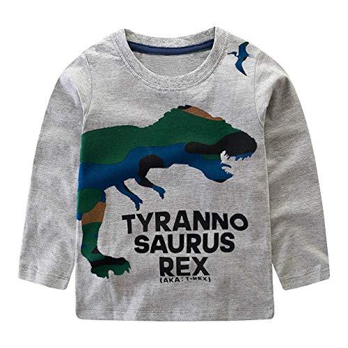 Racoste Eletina Little Boys Dinosaurier Sweatshirt Kleinkind Top T-Shirt Rex Dino Baby Ostern Gr. 160 cm(9-10 Jahre), D-grau