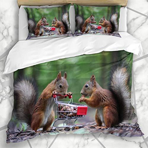 HARXISE Bettwäsche - Bettwäscheset Flaumige Paar-Eichhörnchen Essen Nuss-kleines Warenkorb-Natur-Lebensmittel-Park-wildes hölzernes Design Mikrofaser weich dreiteilig135*200