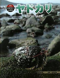 ヤドカリ―しおだまりの生き物 (科学のアルバム・かがやくいのち)