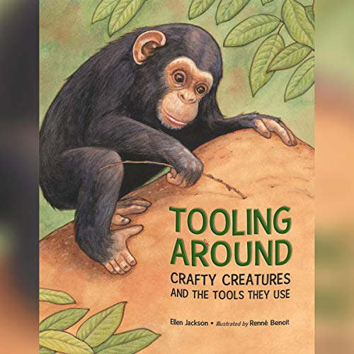 Tooling Around  By  cover art