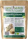 Ashwagandha en Poudre Bio 500G   Anti-stress, Sommeil, Adaptogène  ...