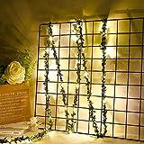 Yosemite - Guirnalda de luces LED de 300 cm, USB, diseño de hadas, para fiestas, bodas, fiestas, Navidad, decoración del hogar o dormitorio