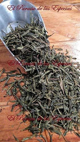 El Paraíso de las Especias Té Verde Sencha 1 kg - Infusión Te Verde Natural 100% 1000 gr