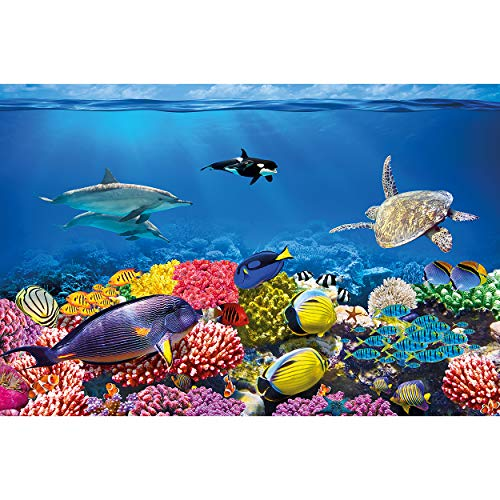 GREAT ART Fototapete – Aquarium – Wandbild Dekoration Farbenfrohe Unterwasserwelt Meeresbewohner Ozean Fische Delphin Korallen-Riff Clownfisch - Foto-Tapete Wandtapete Fotoposter (210x140 cm)
