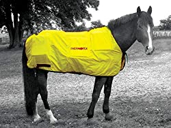 Thermotex Equine Far Infrared Heating - 12 Pad Blanket