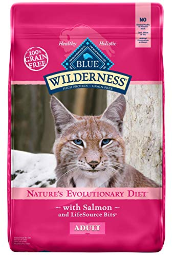 Blue Buffalo Wilderness Adult Dry Food