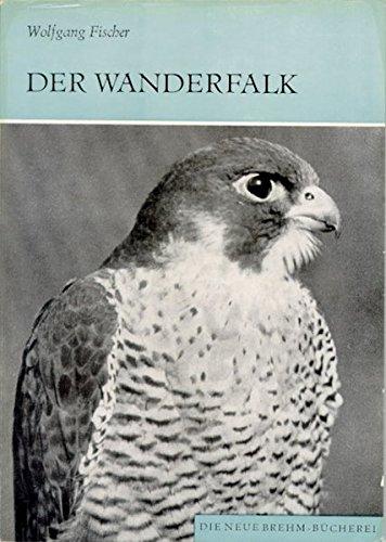 Der Wanderfalk: Falco peregrinus und Falco pelegrinoides