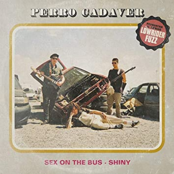 Sex On The Bus/ Shiny