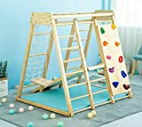 Indoor Toddler & Child Indoor Gym Playground Climber Real...