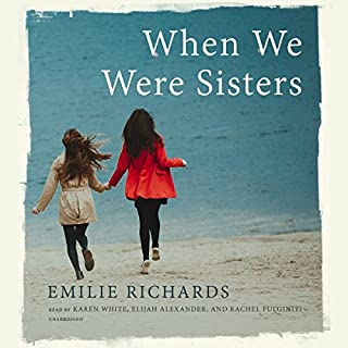 Download chick lit fiction audio books audible when we were sisters audiobook cover art fandeluxe Gallery