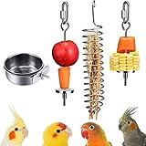 xutong 1 comedero para pájaros + 3 piezas porta alimentos para pájaros, acero inoxidable, frutero para pájaros, alimentador para colgar, pincho de fruta y pájaros