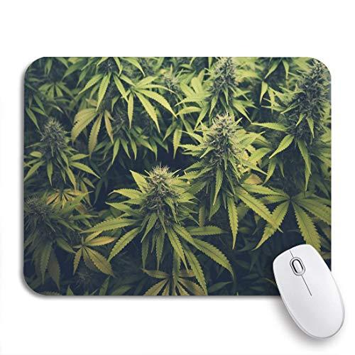 Gaming Mouse Pad Green Weed Cannabis Knospe Marihuana Pflanzen Marihuana Sativa Hanf rutschfeste Gummi Backing Computer Mousepad für Notebooks Maus Matten