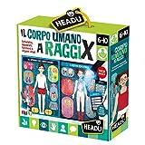 Headu - El Cuerpo Humano de Rayos X, IT21543.