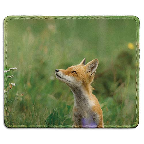 dealzEpic - Art Mousepad - Natural Rubber Mouse Pad Printed with Wild Animal Cute Little Red Fox in The Natural Environment - Stitched Edges - 9.5x7.9 inches