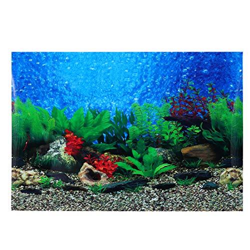 Balacoo Aquarium Hintergrund - Doppelseitige Aquarium Hintergrundbild Dekorative Aufkleber 3D Unterwasser Hintergrund