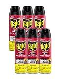 Raid Ant & Roach Killer Lemon Scent, 17.5 OZ (6)