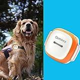 Osmewy GT011 Traceur GPS pour chiens et chats avec collier de recherche de lumière et clôture anti-perte étanche 1450 mAh