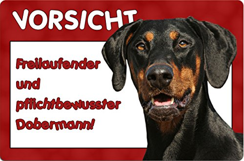 +++ DOBERMANN - Metall WARNSCHILD Schild Hundeschild Sign - DBM 17 T6