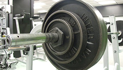 Iron Bull Strength Olympic Fractional Plates