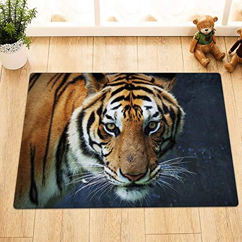 NNAYD1996 Wild Tiger Animal 3D printen, badkamer accessoires, voordeur, achterdeur, keuken, woonkamer, toilet