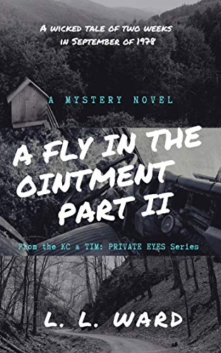 A Fly in the Ointment: Part II (KC & TIM - PRIVATE EYES) (English Edition)