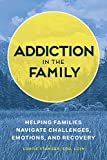Addiction in the Family: Helping Families Navigate Challenges, Emotions, and Recovery (English Edition)