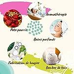 Naissance Huile Essentielle de Camphre (n° 133) - 100ml - 100% pure #1