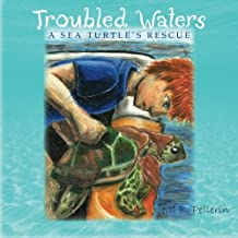 Troubled Waters: A Sea Turtle's Rescue