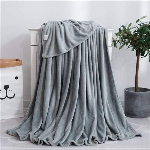 LYH2000 Super Soft Fluffy Fuzzy Flannel Blankets For Beds Four Seasons Bed Linen Solid Pink Blue Warm Sofa Cover Airplane Blanket 70X100Cm For Baby Grey