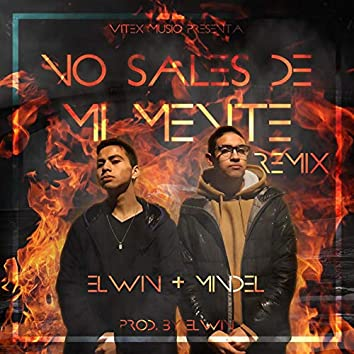 No Sales De Mi Mente (feat. Mindel) [Remix]