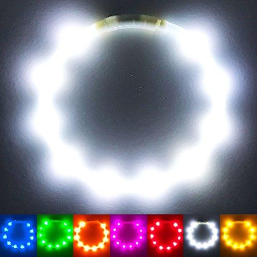 PetSol Collier pour Chien à Del Rechargeable par USB très Lumineux (Un Ajustement Universel Facile à Nettoyer et résistant aux intempéries améliore la visibilité) Taille Unique Blanc