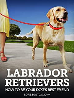 Labrador Retrievers: How to Be Your Dog's Best Friend (101 Publishing: Pets Series)