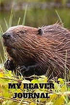 beaver 100