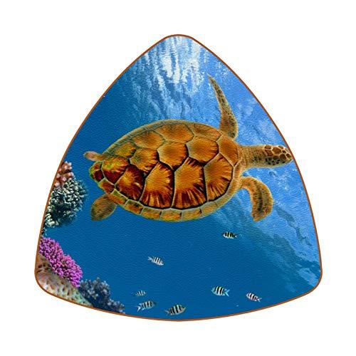 Coral Reef and Turtle Juego de 6 Posavasos para Bebidas para el...