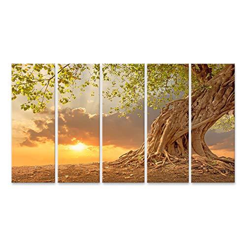 Bild auf Leinwand Alter Baum im Wald bei Sonnenaufgang in Orange Wandbild Poster Leinwandbild Bilder ABAD