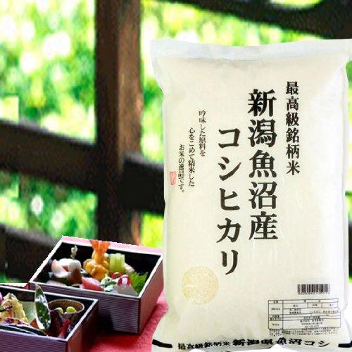 【精米】新潟県 魚沼産 白米 JA十日町 こしひかり 2kgx5袋 令和3年産 新米